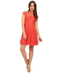Jessica Simpson Lace Cap Sleeve Fit Flare Dress Js6t8820 Coral Women's Dress