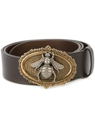 Dolce And Gabbana Bee Buckle Belt Brown