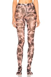 Zimmermann Bird Chintz Leggings In Pink Abstract Pink Abstract