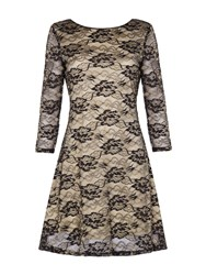 Mela Loves London Floral Lace Dress Black