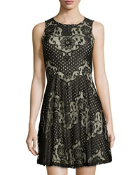 Label By 5Twelve Sleeveless Fit And Flare Mixed Lace Dress Blk Beige