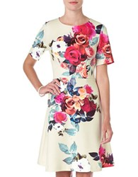 Phase Eight Calie Floral Print Fit And Flare Dress Beige Red