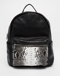 Urban Originals Backpack Black Snake