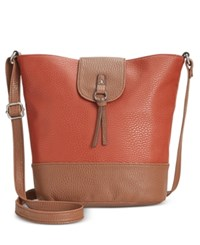 Styleandco. Style Co. Vvini Bucket Bag Only At Macy's Henna Luggage