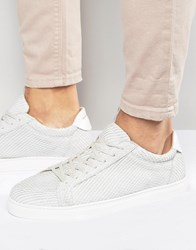 Selected Homme David Leather Snake Trainers White