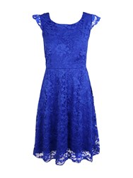 Feverfish Lace Frill Sleeve Skater Dress Royal Blue