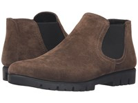 The Flexx Tortilla Too Petra Gris Women's Pull On Boots Brown