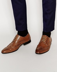 New Look Faux Leather Brogue Mocha