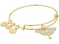 Alex And Ani Luna Moth Ring Rafaelian Gold Ring