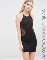 Tfnc Petite Spot Mesh High Neck Pencil Dress Black