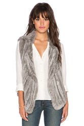 Joie Andoni Rabbit Fur Vest Gray
