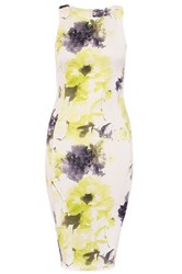 Quiz Cream And Lime Floral Print Dress