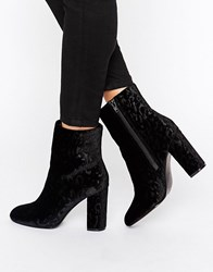 Faith Baro Velvet Heeled Ankle Boots Black