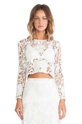 Alexis Laiden Lace Crop Top White