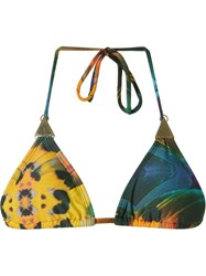 Blue Man Feather Print Triangle Bikini Top