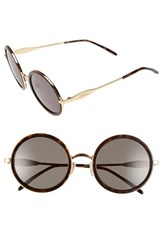 Wildfox Couture Women's Wildfox 'Ryder' 50Mm Sunglasses Gold Tortoise G15