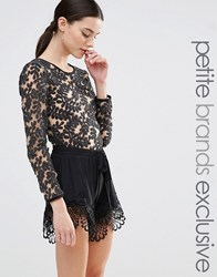 True Decadence Petite Embellished Lace Body Black