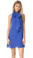 Alice Olivia Cassidy Tie Neck Flare Dress Cobalt