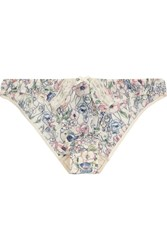 Elle Macpherson Indian Poppy Printed Stretch Crepe Briefs Blue