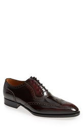 Sendra 'Wexford' Wingtip Men Bordeaux