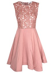 True Decadence Lace Skater Prom Dress Dusty Pink