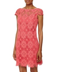 Ali Ro Cap Sleeve Lace Shift Dress Watermelon