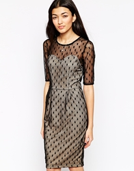 Sugarhill Boutique Spot On Party Dress Blacknude