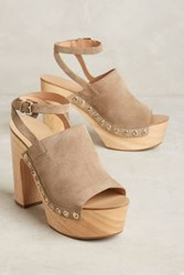Anthropologie Sigerson Morrison Quella Clogs Flint 6 Wedges