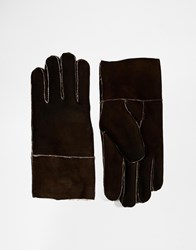 French Connection Sheepskin Gloves Brown