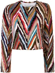 Alice Olivia Striped Cropped Jacket Multicolour