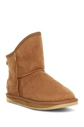 Australia Luxe Collective Cosy Genuine Shearling X Short Boot Gray