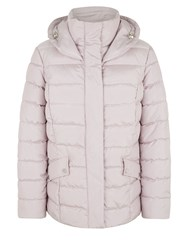 Kaliko Short Padded Collar Coat Pastel Pink