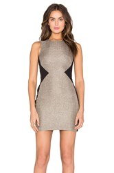 Bobi Black Sateen Knit Colorblock Dress Beige