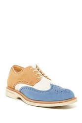 Sperry Gold Wingtip Oxford Multi