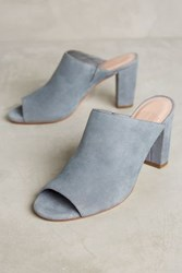 Anthropologie Charlotte Stone Morely Mules Grey