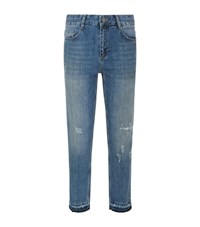 Set Indiana Cropped Distressed Jeans Female Denim