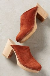 Anthropologie Charlotte Stone Marlo Clogs Honey