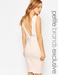 Paper Dolls Petite Bow Waist Pencil Dress With Plunge Back Softpink