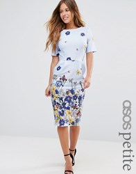 Asos Petite Wiggle Dress With Floral Border Print Pale Blue Pink