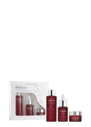 Bareminerals Discover Mineralixirstm Kit