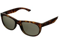 Kaenon Stinson Tortoise Fashion Sunglasses Brown