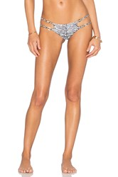 Indah Cato Hipster Bikini Bottom Black And White