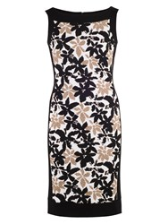 Chesca Floral Print Fancy Jersey Dress Black