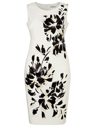 Windsmoor Floral Placement Dress Monochrome