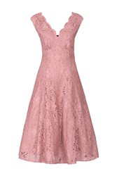 Jolie Moi Empire Waistline Lace Dress Mauve