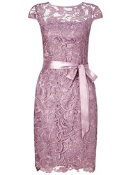 Adrianna Papell Cap Sleeve Lace Cocktail Dress Dusty Rose