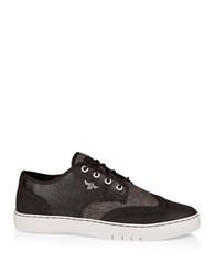 Creative Recreation Defeo Q Croc Embossed Oxford Sneakers Black