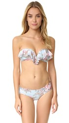 Zimmermann Separates Frill Bandeau Top Mint Floral