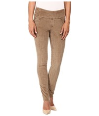 Jag Jeans Nora Pull On Skinny 18 Wale Corduroy Toffee Women's Casual Pants Brown