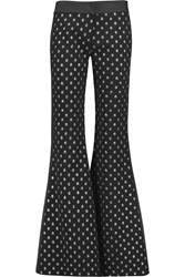 Alexis Jeff Fil Coupe Flared Pants Black